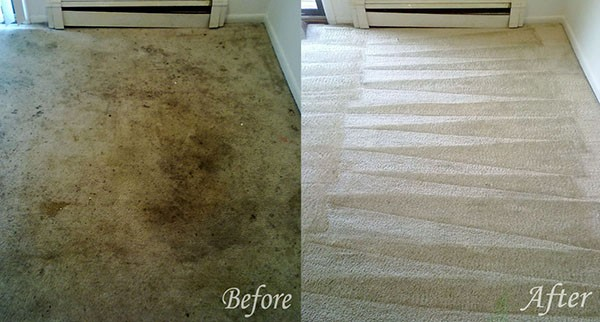 before_after_Carpet_Cleaners_gravesend.jpg